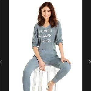 WildFox Dogs Baggy Beach V Neck Pullover